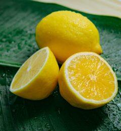 Fiche : l'HE de citron jaune