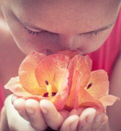 Compte-rendu – Soin du Féminin : Se relier à sa créativité – Mai 2020