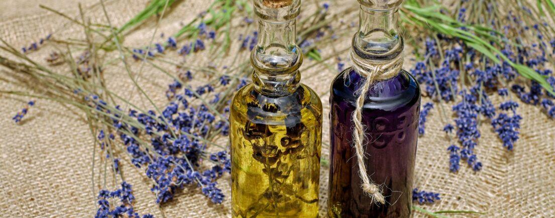 Fiche : l'huile végétale de ricin