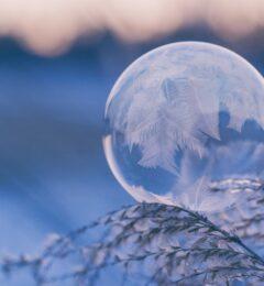 Compte-rendu – Soin du Solstice d'hiver 2020